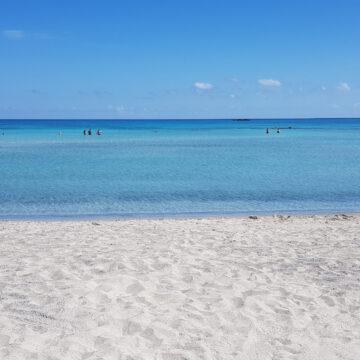 Sunny Bay | Beach Hotel in Kissamos, Chania, Crete